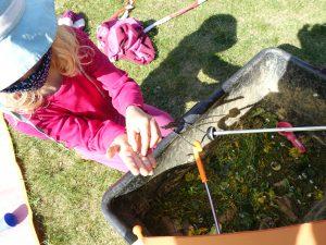 Mädchen baut Terrarium mit Schnecken