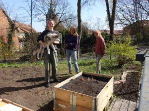 Studenten-WG beim Gärtnern