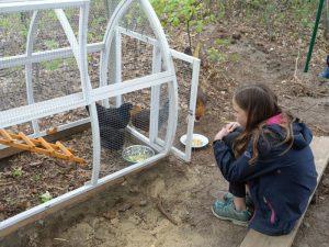 Mädchen sitzt am Hühnerhäuschen, beobachtend