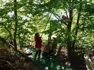 Kinder in ihrer Baumhöhle